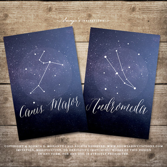 Starry Night Celestial Wedding Decor Signs Star Constellation